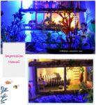 Румбокс DIY-Dom «Впечатляющие Гавайи» «Impression Hawaii»